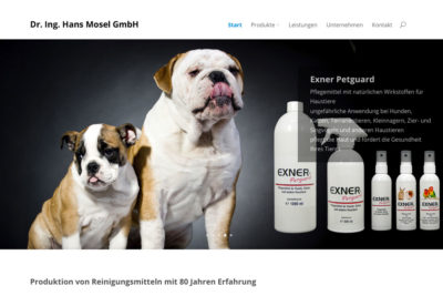 Website Referenz Dr. Ing. Hans Mosel
